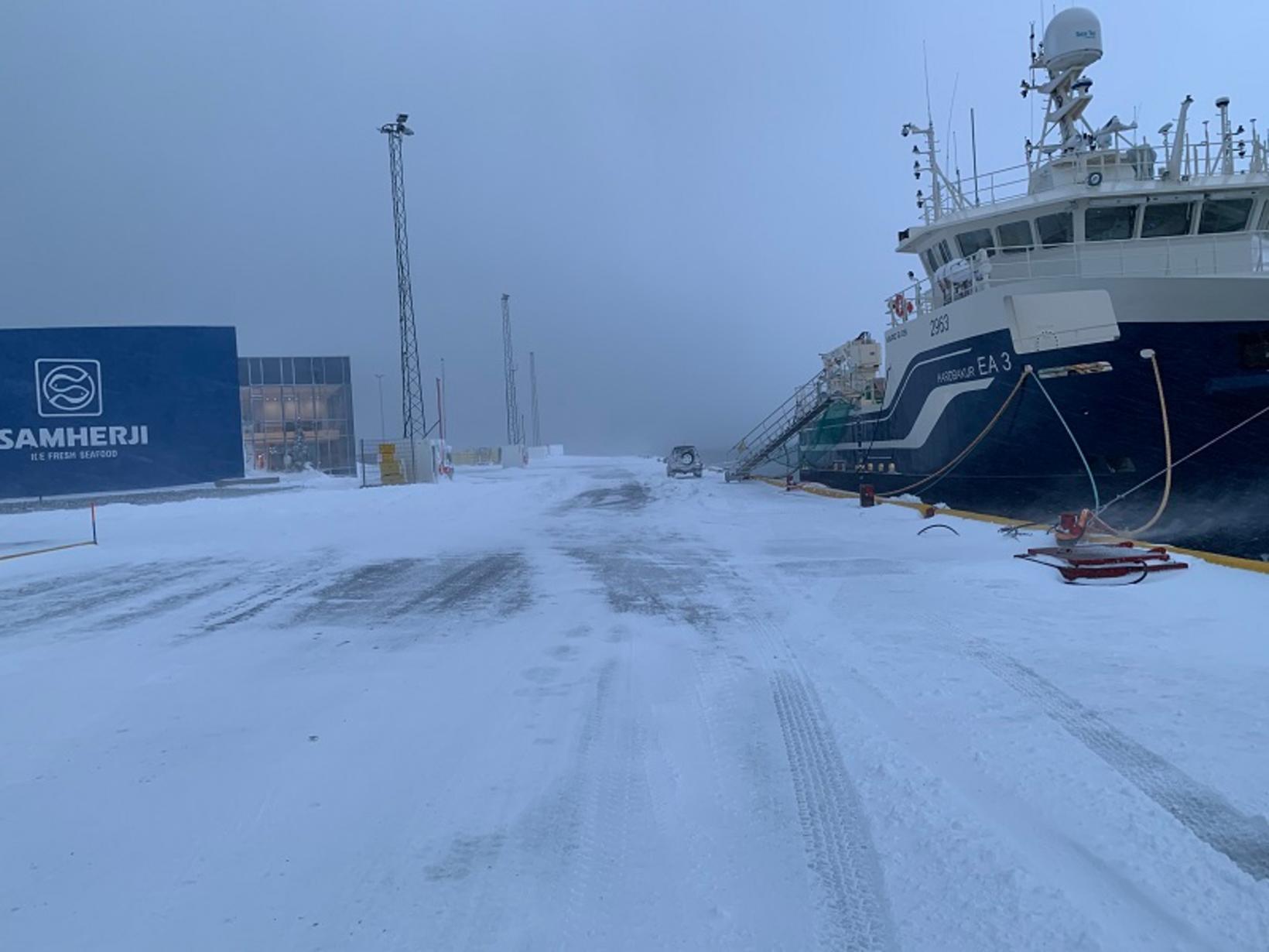 Það var fallegt en kalt á bryggjunni á Dalvík.
