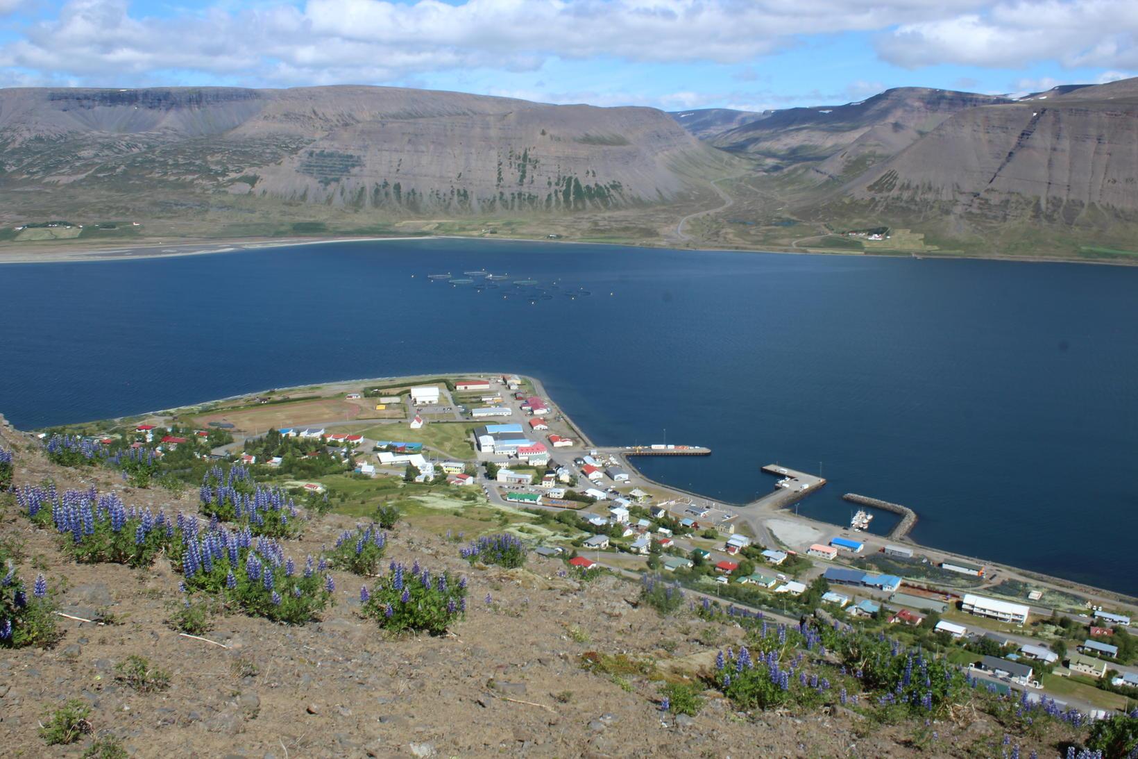 Mikið fjör var á tjaldsvæðinu á Þingeyri um helgina. Raunar …