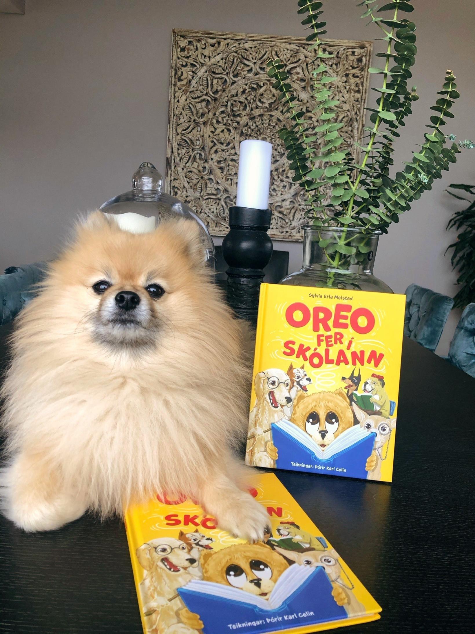 Oreo hefur verið stoð og stytta Sylviu í gegnum árin.