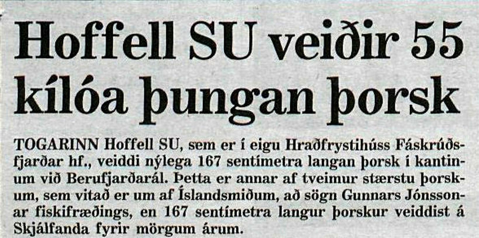Úr Morgunblaðinu 1991.