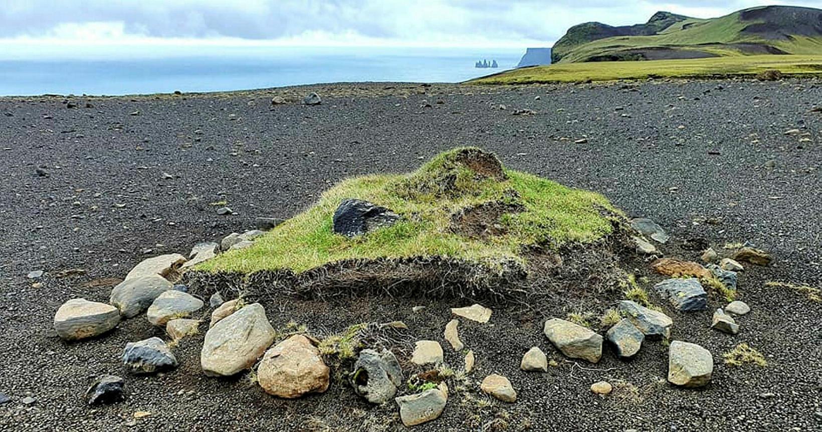 The 'ship' was hidden underneath the grass.