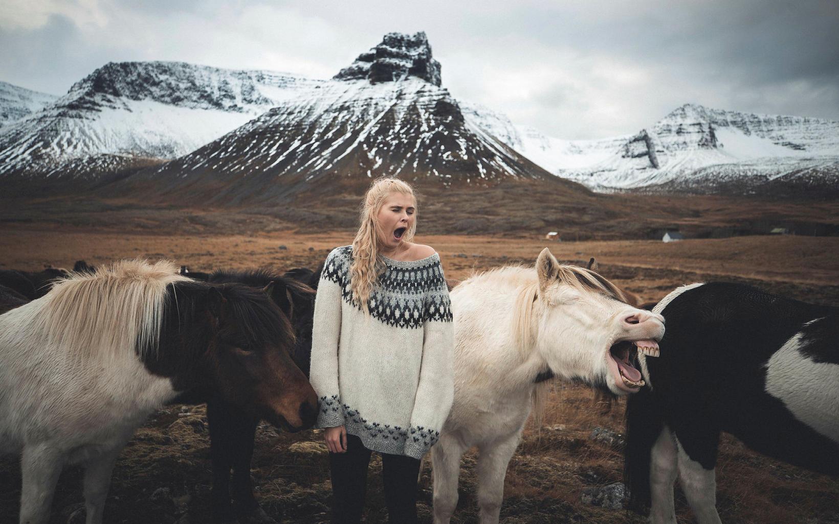 Þegar hestar og kona teygja úr sér í upphafi dags.