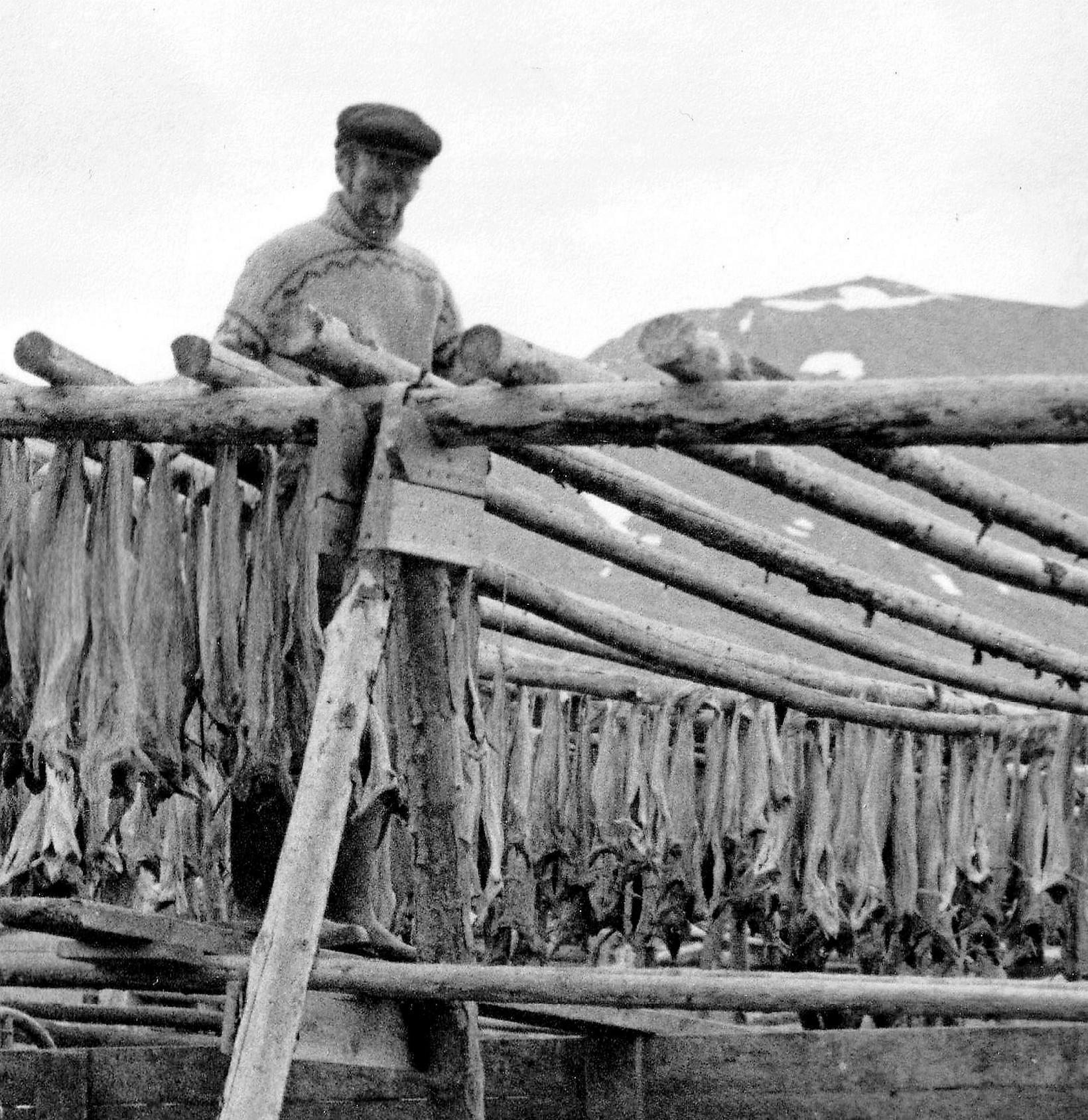 Dalvíkingar hafa alltaf verið umsvifamiklir í skreiðarverkun.