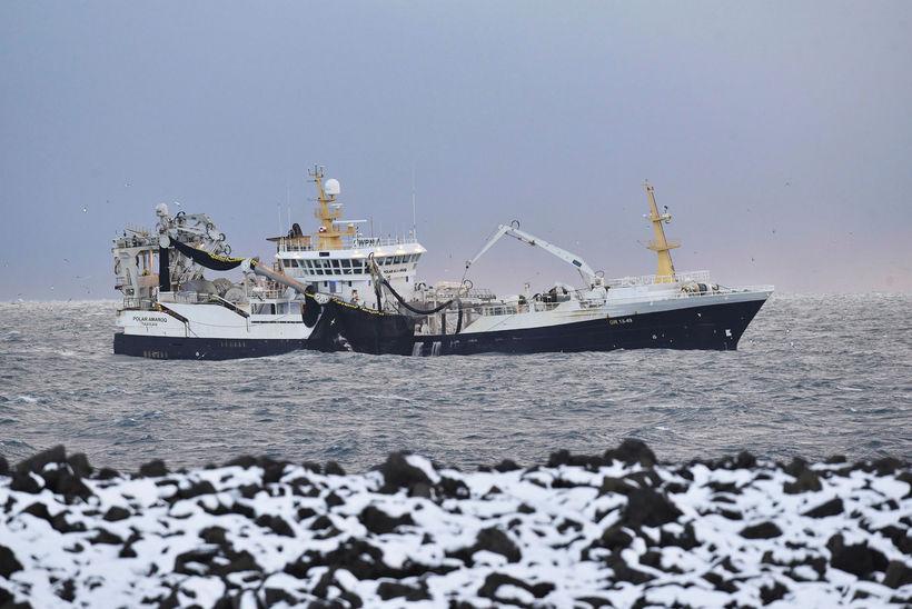 Grænlenska skipið Polar Amaroq við Reykjanes í fyrravetur. Í gær ...