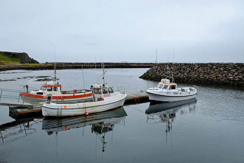 Á hverju sumri kemur hópur manna til strandveiða í Árneshreppi.