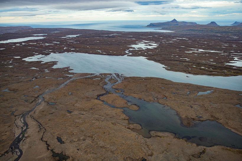 Þyrla landhelgisgæslunnar svipast nú meðal annars um eftir ísbjörnum á ...