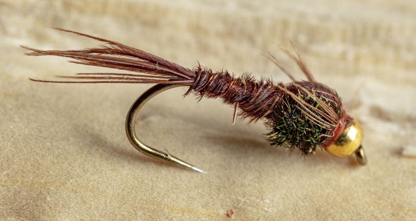 Silungafluga vikunnar er Pheasant Tail. Púpa sem er til í ...