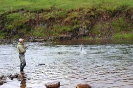 Glímt við lax í Efri-Johnsson í Kjarrá sumarið 2018.