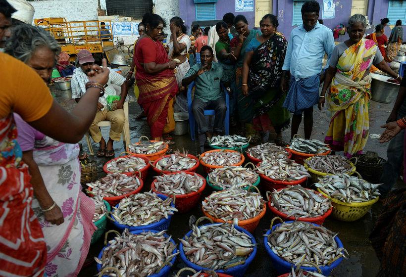 Sjómenn í Chennai selja afla sinn. Hinn almenni Indverji hefur ...