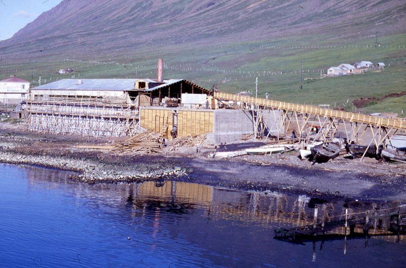 Síldarverksmiðja Síldarvinnslunnar 17. júlí 1958, en þann dag var í ...