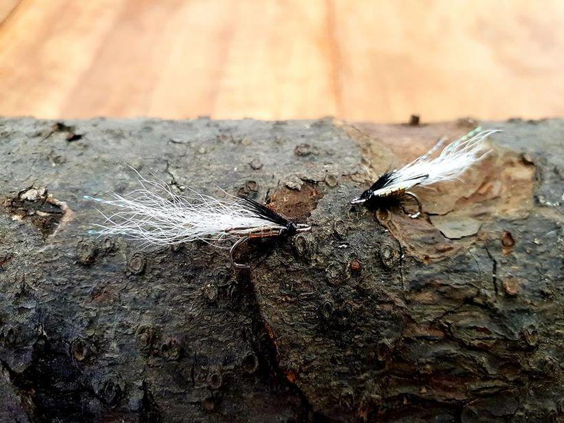 Örflugan Brá er fluga vikunnar fyrir lax.
