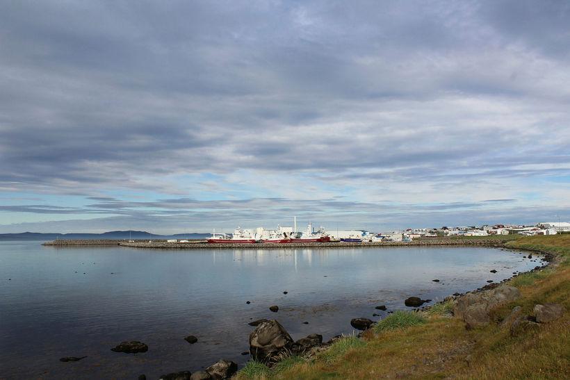 Ísfélagið hefur verið í töluverðum framkvæmdum í vinnslunni á Þórshöfn.