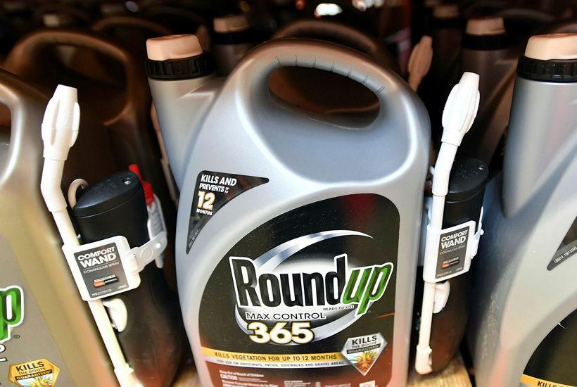 Roundup-plöntueyðirinn inniheldur glýfosat sem sumir vísindamenn telja geta verið krabbameinsvaldandi.