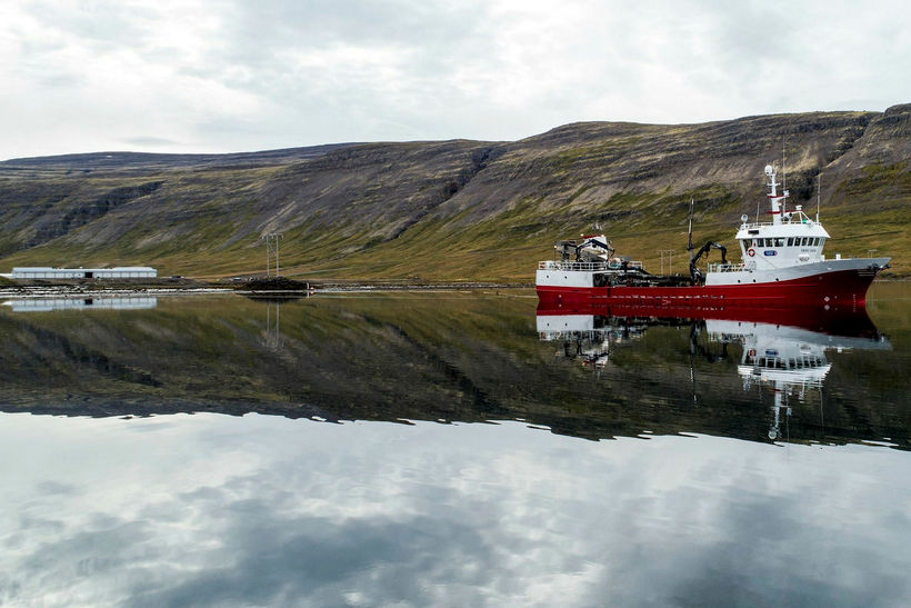 Norway Royal Salmon er stærsti eigandi Arctic Fish.