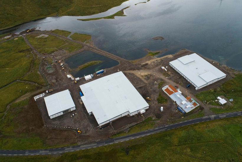 Arctic Fish er að byggja upp mikla seiðastöð í Tálknafirði. ...