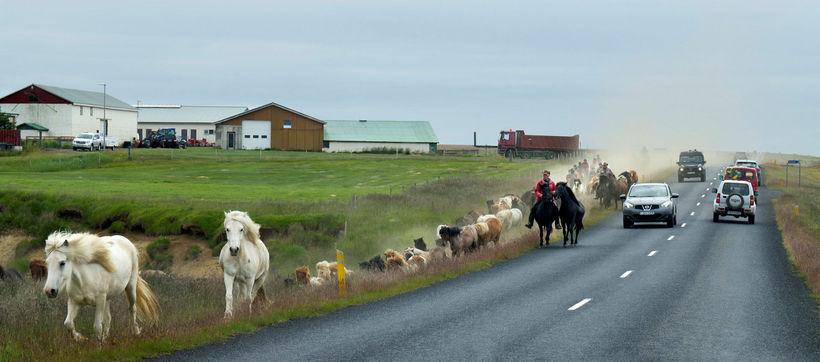 Á árinu hefur umferðin aukist mest á Suðurlandi eða um ...