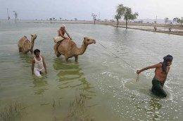 Frá flóðasvæðunum í Pakistan.