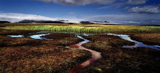 Icelandic nature has changed much in the last decades due …
