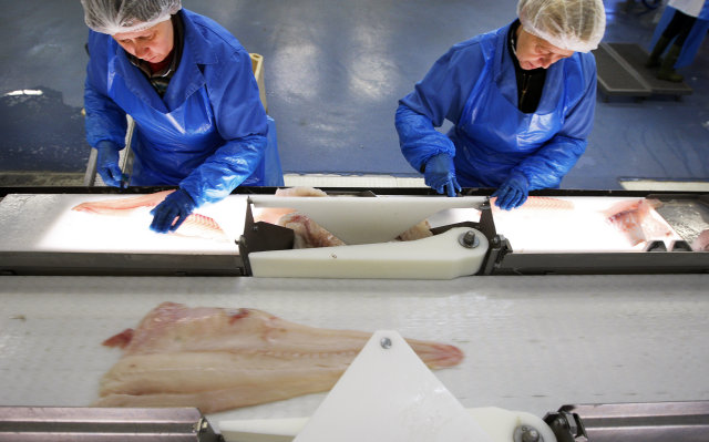 Fisheries is just one example of an Icelandic industry which ...