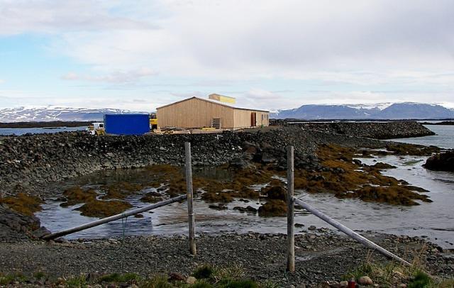 Verksmiðjan Norður & Co í Reykhólahöfn, þar sem Norðursalt er …