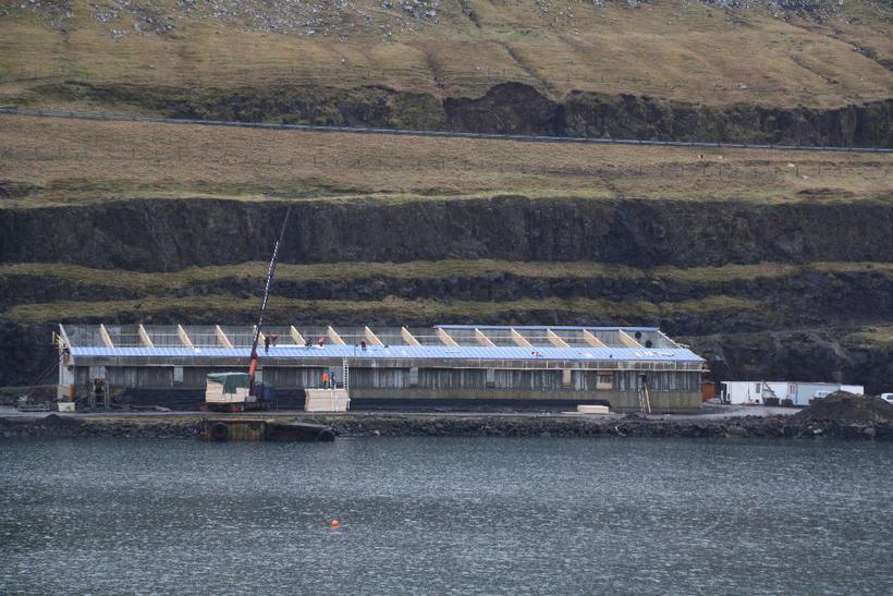 Pálshöll verður með fyrstu 50 metra sundlaug Færeyja.