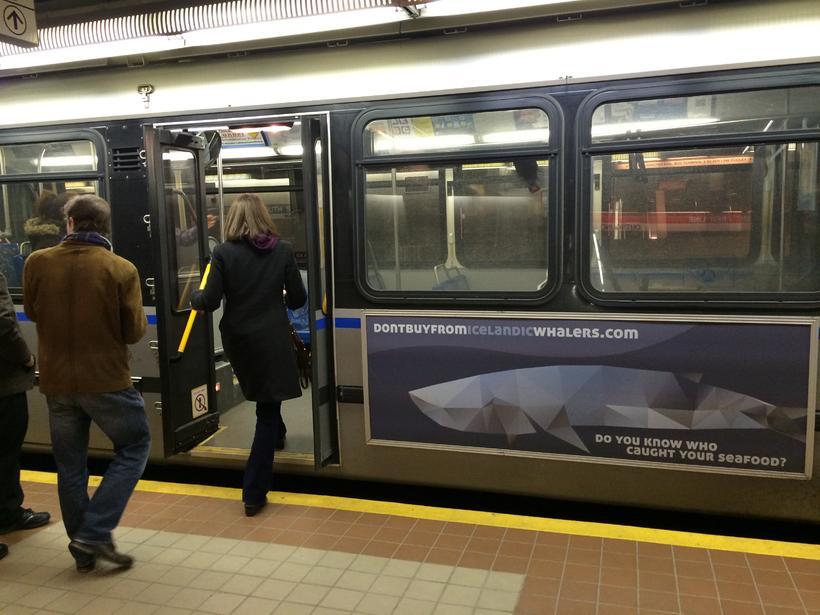 Auglýsingaherferð gegn hvalveiðum Íslendinga á strætisvögnum í Boston.