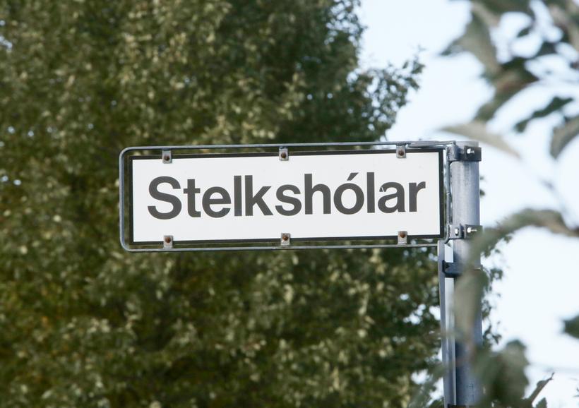 Lík konunnar fannst í íbúð við Stelkshóla í Breiðholti.