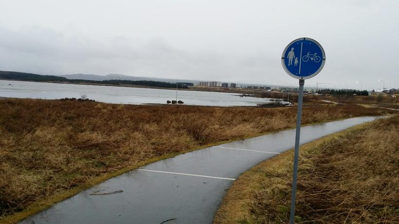 Hjóla- og göngustígur við Rauðavatn.