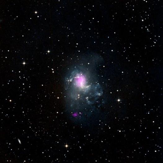 Tvö svarthol í þyrilvetrarbrautinni NGC 1313, merkt fjólubláum lit.