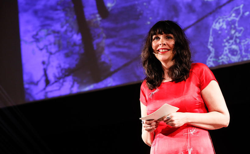 Birgitta Jónsdóttir, MP of the Pirate party spoke at the …