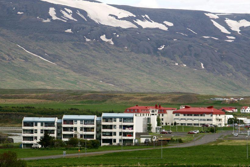 Maðurinn virðist ekki hafa lært að reynslunni þegar hann var ...