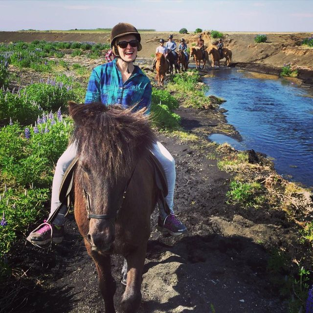 Seeing South Iceland on horseback.