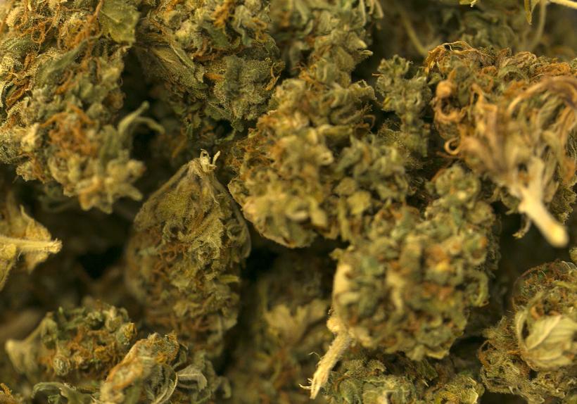 Kannabis.