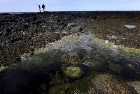The body was found on Iceland's famous Snæfellsnes peninsula.