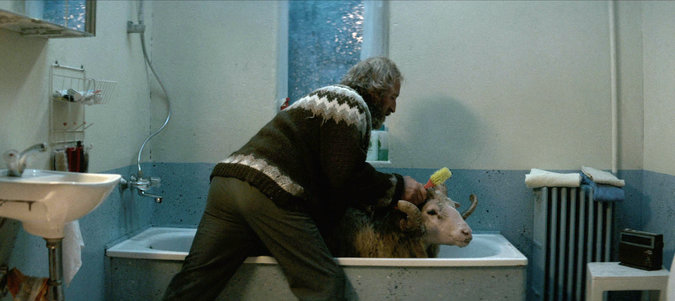 Rams tells the story of two feuding brothers in rural ...
