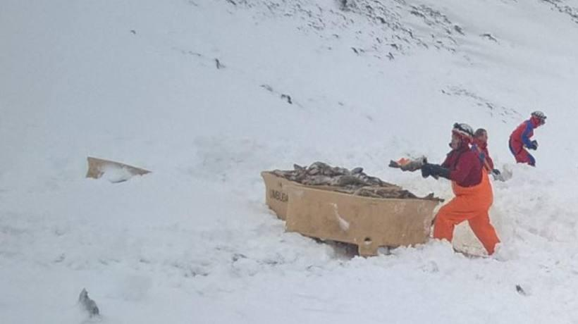 The Skagafjörður rescue team spent seven hours locating all the ...