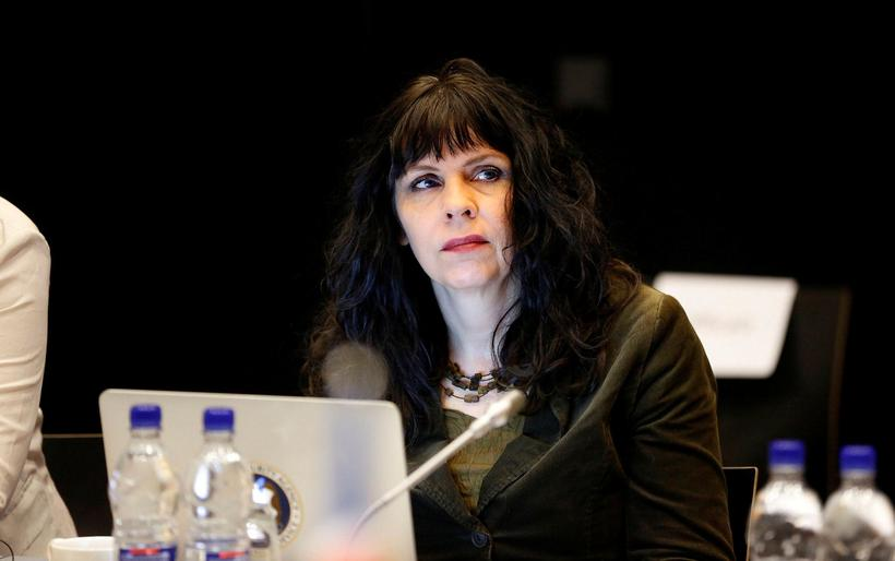 Birgitta Jónsdóttir, Pirate Party MP.