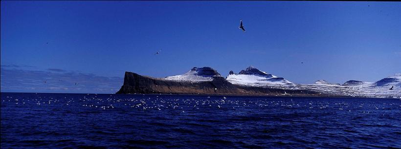 Horn, Hornbjarg og Hornvík, á Hornströndum.