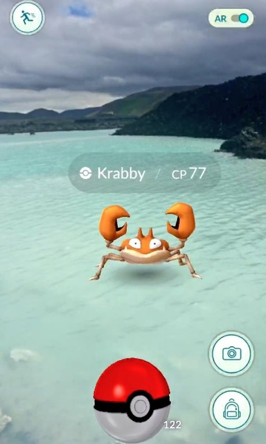 A Krabby at the Blue Lagoon in Iceland.