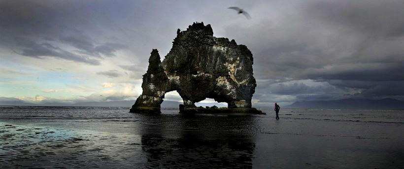 Hvítserkur is a basalt stack with a peculiar shape, it …