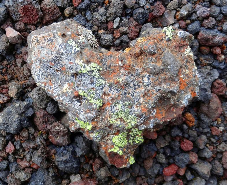 An unusual heart-shaped stone found in Hengill, South Iceland.