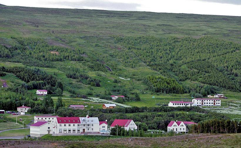 Frá Laugum í Þingeyjarsveit.
