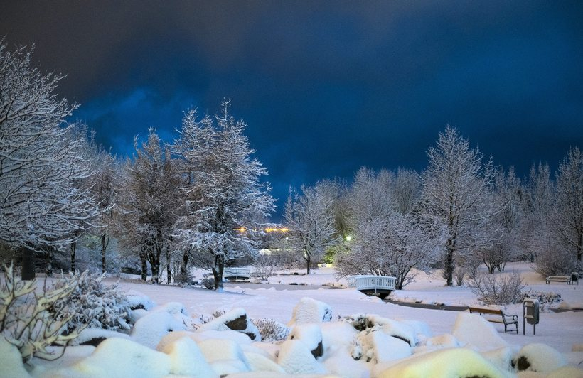 essays about winter season