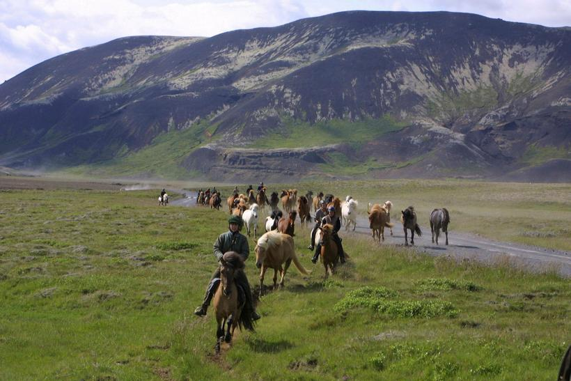 Horse riding is a popular sport in Skagafjörður.