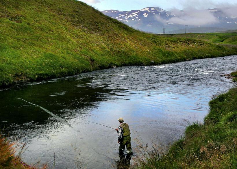 Borgarfjörður, which Norðurá runs through, is a popular destination for ...