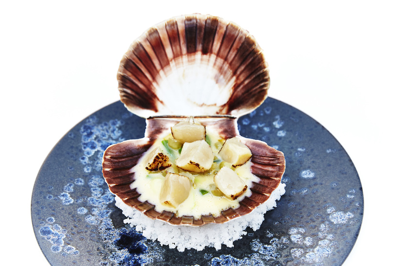 Icelandic scallop with smoked butter.