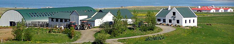 Þúfa, a farm in Kjós.