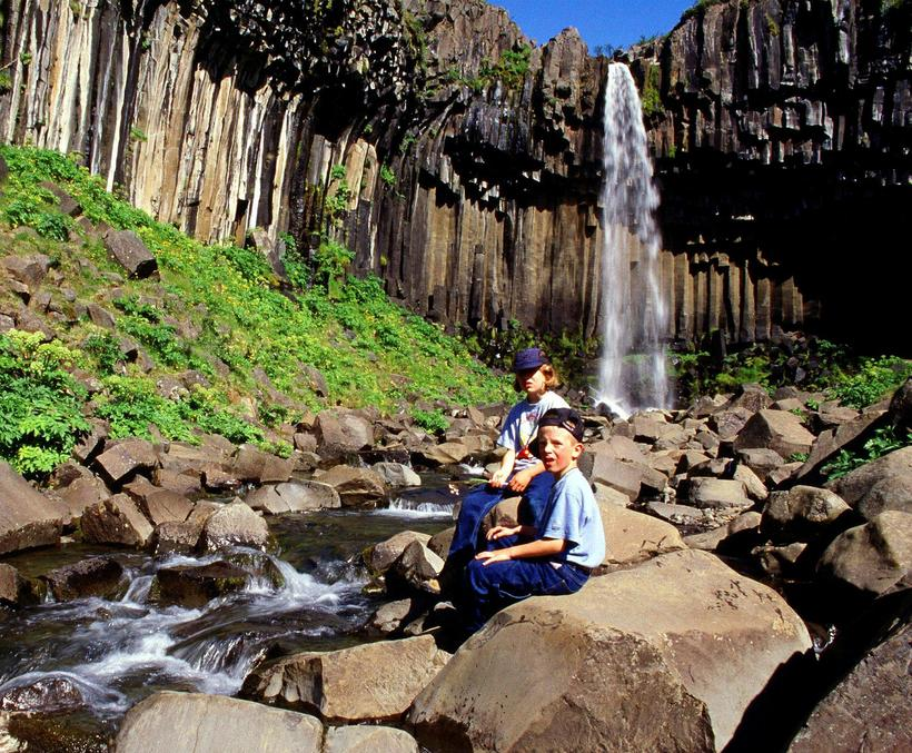 Svartifoss waterfall is in the south part of the national …