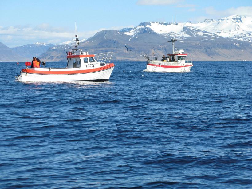 Strandveiðibátar á sjó við Snæfellsnes.