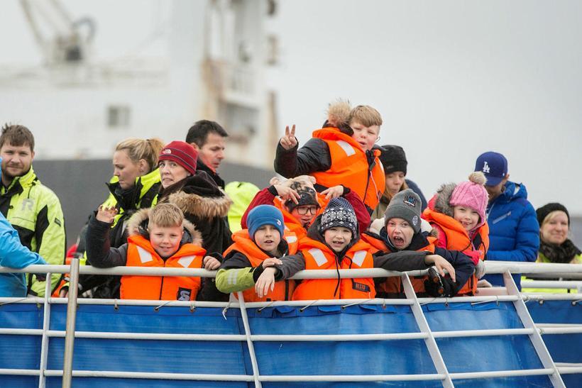 Árlega fara um 250 þúsund útlendingar í hvalaskoðunaferðir frá höfnum ...